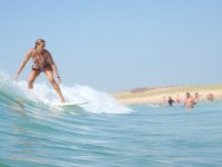 TripSurfeuse avatar